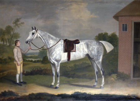 'Fury', a Dappled Grey, with his Groom