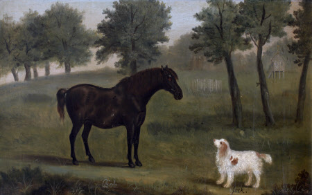 'Bob and 'Jock', Black Horse with Dog