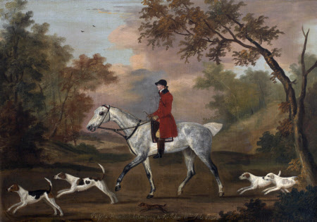 'Russ', a Grey Horse with Hounds