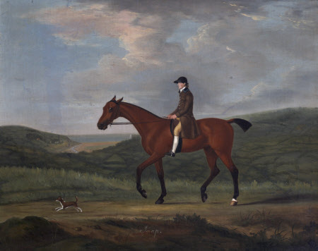 'Snap', a Bay Horse and a Little Dog