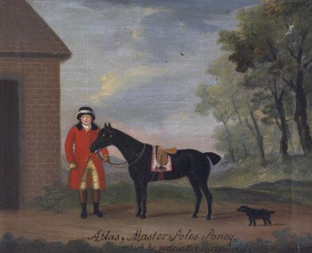 'Atlas', Master Pole's Pony