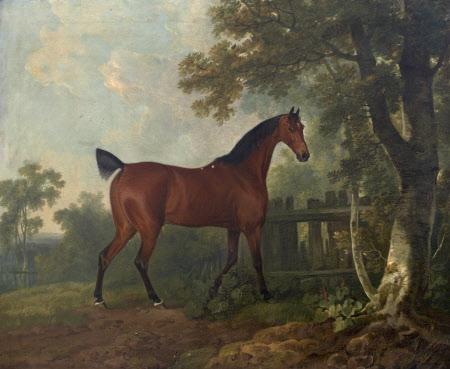 'Amaranth', the property of A. B. St Leger Esq., 1769
