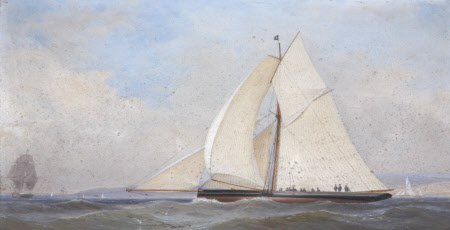 The Yacht, 'Rosebud'