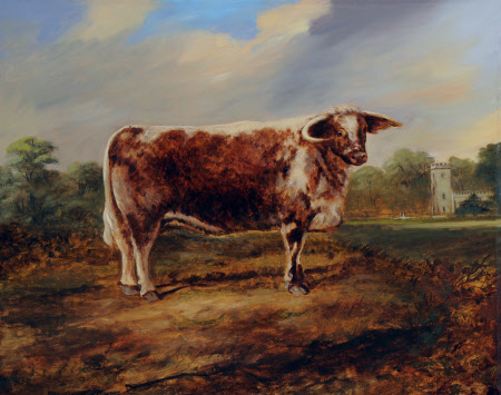 A Prize Bull in front of Calke Church