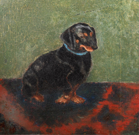 A Dachshund called 'Waldmann'