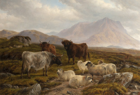 Highland Cattle and Sheep in a Mountainous Landscape