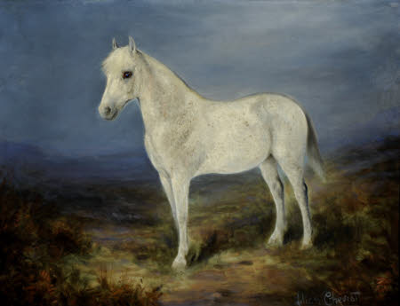 A Grey Horse standing in a Landscape