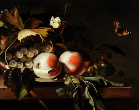 Still Life with Fruit, Grapes and Foliage with Flies and Butterflies