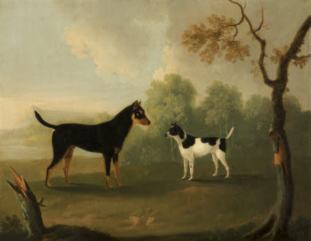 Two Dogs facing in a Landscape