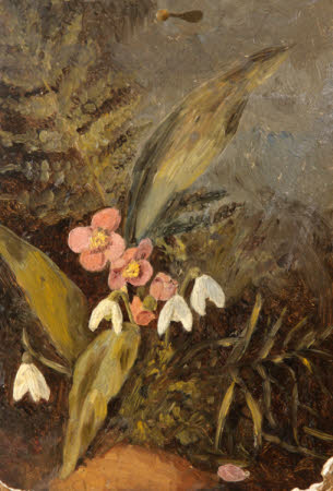 Still Life of Snowdrops, Helibore and Fern