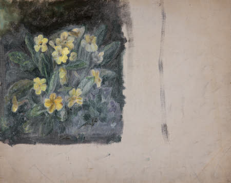 Primroses (from a Portfolio of oil sketches)