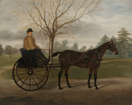 The Carriage Horse 'Minnie' with a Groom in a Buggy in the Grounds of Florence Court