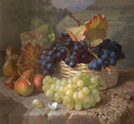 Still Life of White and Red Grapes in a Basket, with Two Pears and a Cabbage White