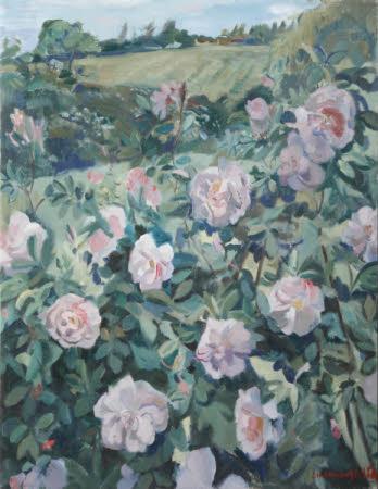 Rose Celestial
