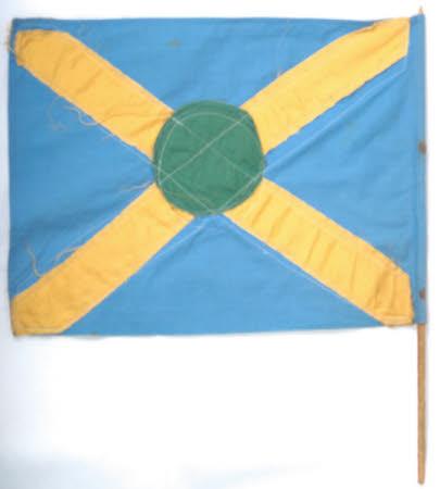 Toy flag