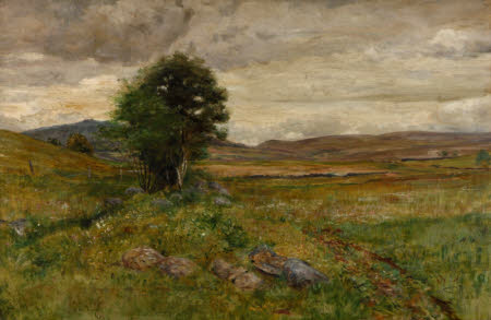 Moorland Landscape with a Tree