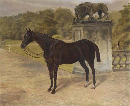 Charlestown, a Dark Hunter by the Gardens at Mount Stewart