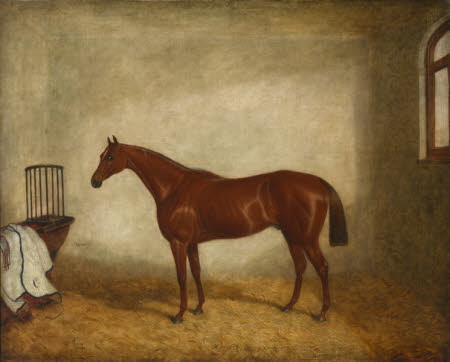 Hermit, Winner of the 1867 Derby, in a Stable