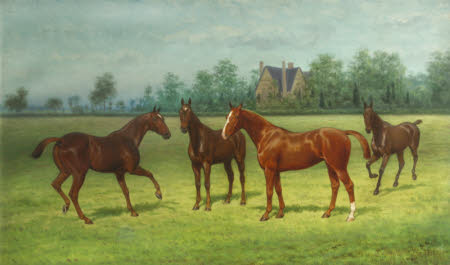 Lockey, Lady Abbess, Beatrice and Mahomet - Four Horses in a Field