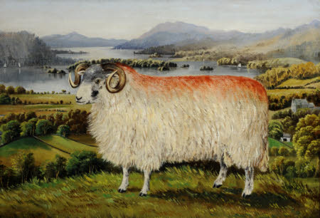 Swaledale Ram from Troutbeck, looking south down Lake Windermere