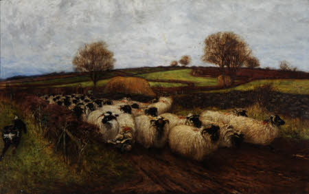 Landscape with Sheep and Sheep Dog