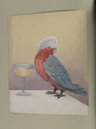 Parrot and Wineglass