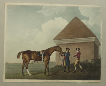 A horse named 'Eclipse' (after George Stubbs)