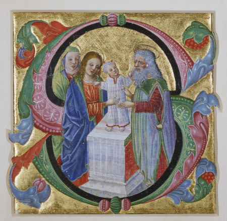 Illuminated Initial 'S': the Boyhood of Christ
