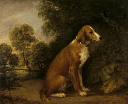 A Setter seated in a Landscape