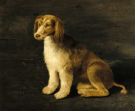 Called 'Bungey', the Favourite Dog of Sir John Harington (1561-1612)